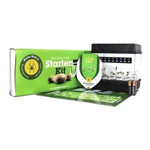 Starters Kit Auto florescentes