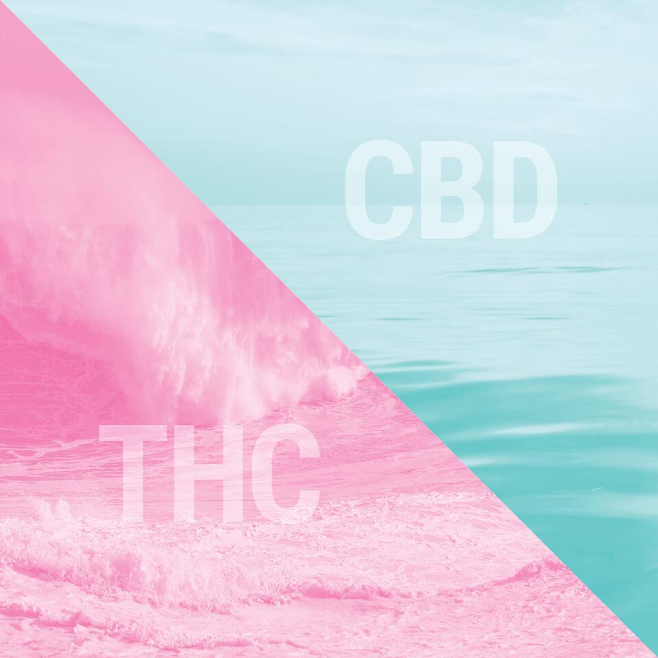 A Canábis Como Remédio